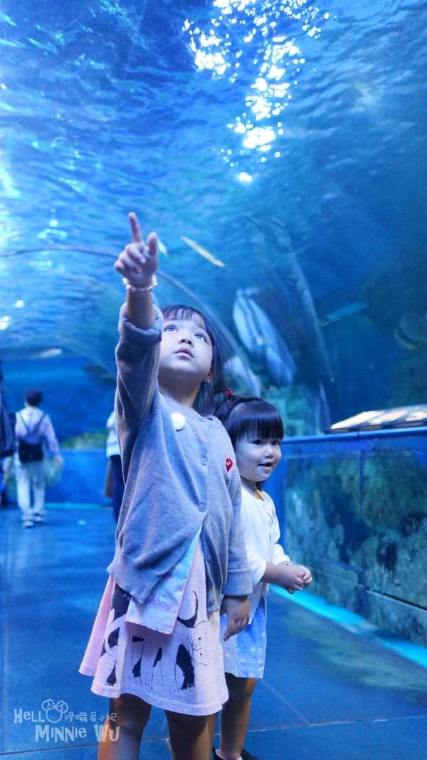 品川水族館海底隧道