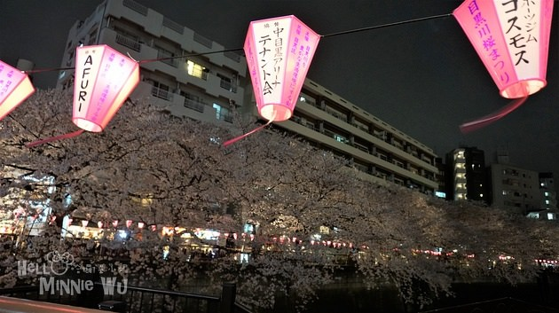 [東京賞櫻景點]中目黑賞櫻/目黑川夜櫻:東京近年最熱門的櫻花景點之一