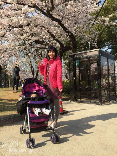 錦糸公園櫻花