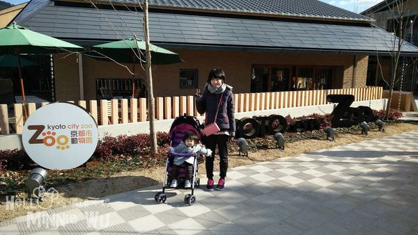[京都親子景點]京都市動物園,小巧可愛的動物園,京都親子自由行必去景點