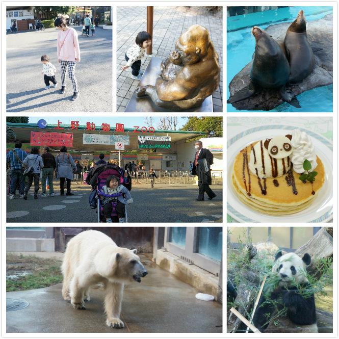 [東京親子景點]上野動物園,東京親子自由行必去景點