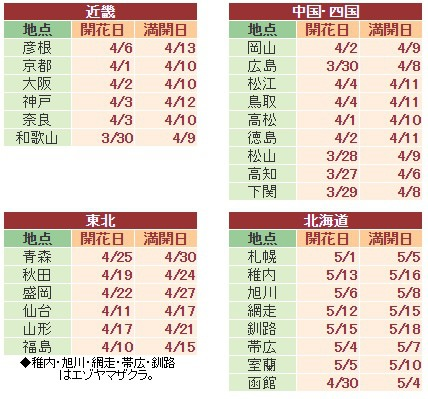 japansakura17032003.jpg