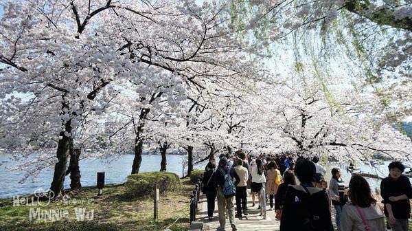 日本櫻花賞櫻名所百選,日本櫻花名所100選,櫻花百選景點