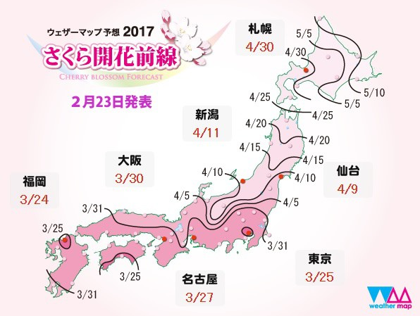 japansakura170223.jpg